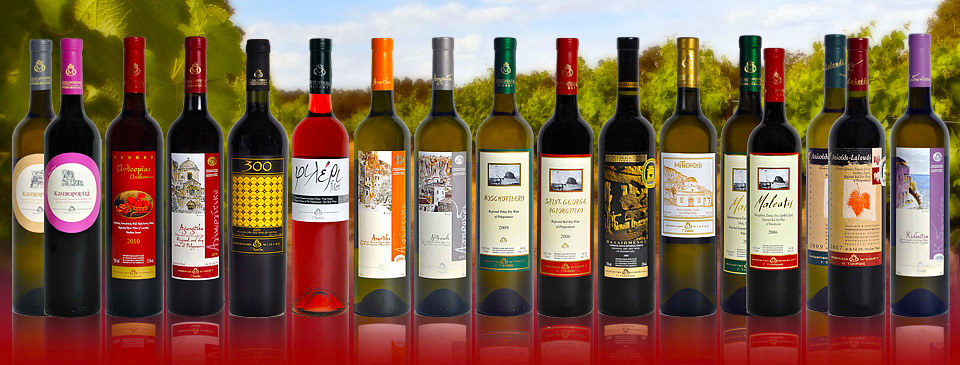 Best South American Wine Tours